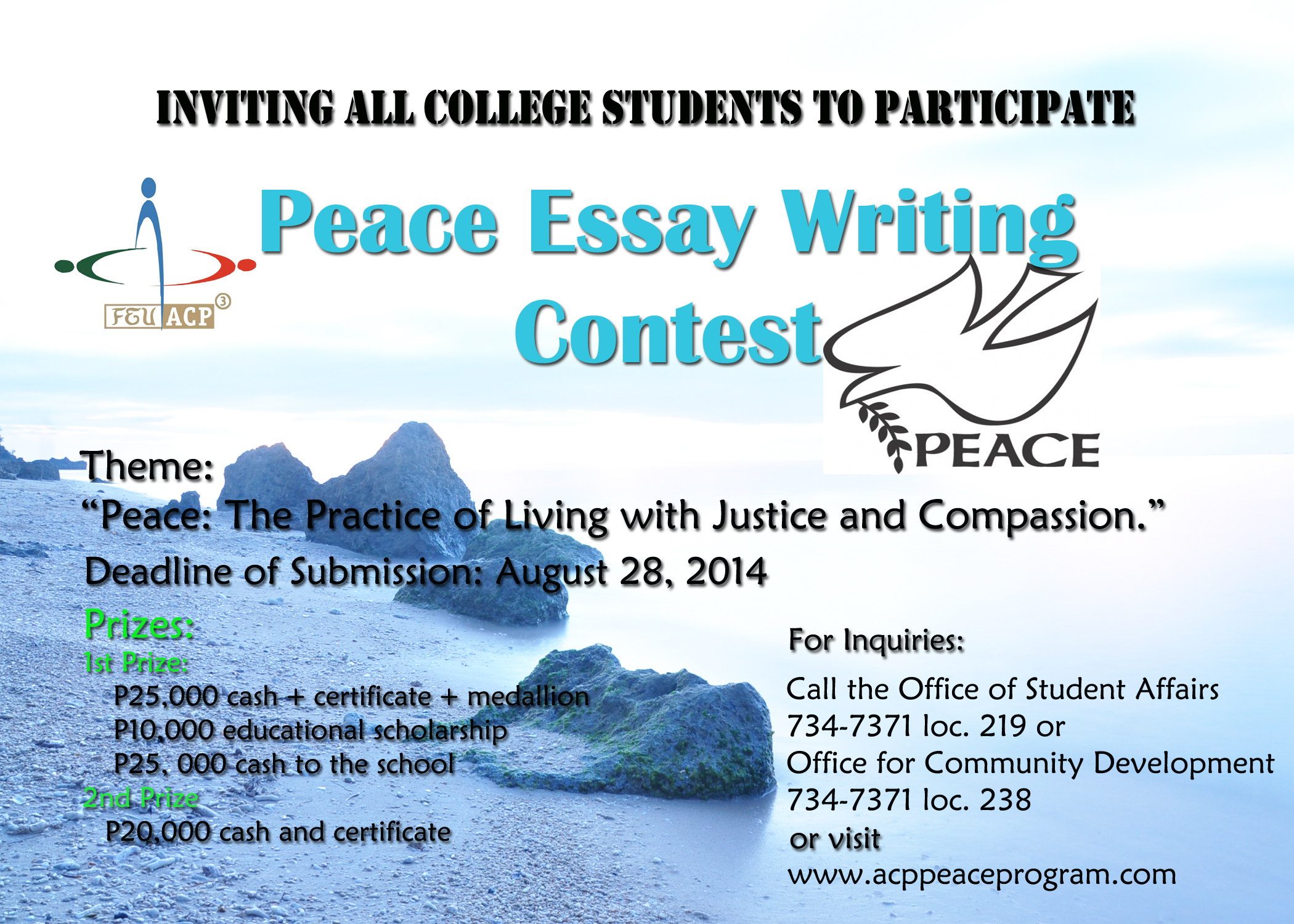 National High School Essay Contest